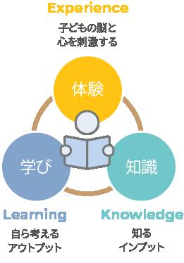 体験・学び・知識